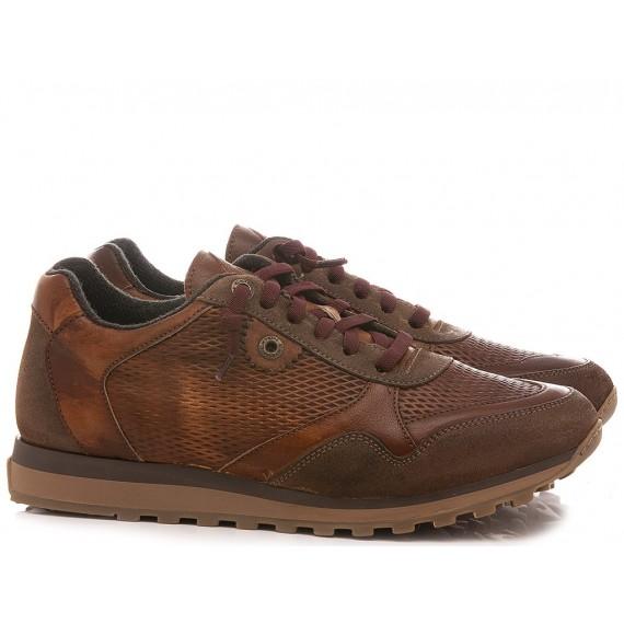 Exton Men's Sneakers Leather Tan 340